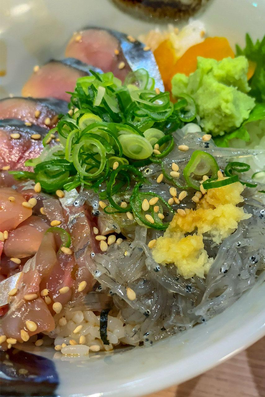 静岡県 沼津駅 沼津魚いち 三色丼とアジフライ